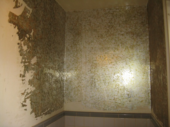 Can You Skim Plaster Over Wallpaper