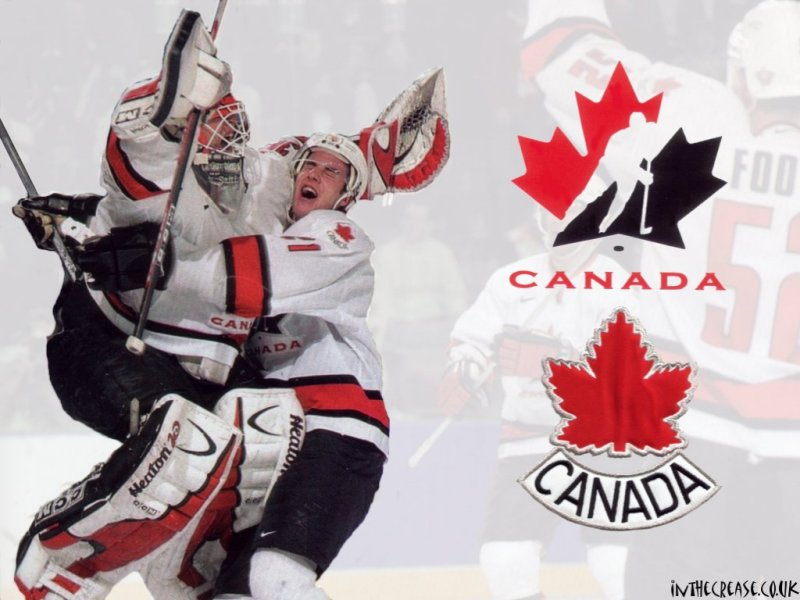 a study of hockey in canada View a profile of canadian international hockey academy in rockland, canada find reviews, photos, maps and more.