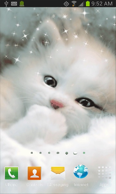 Cat Live Wallpaper Free