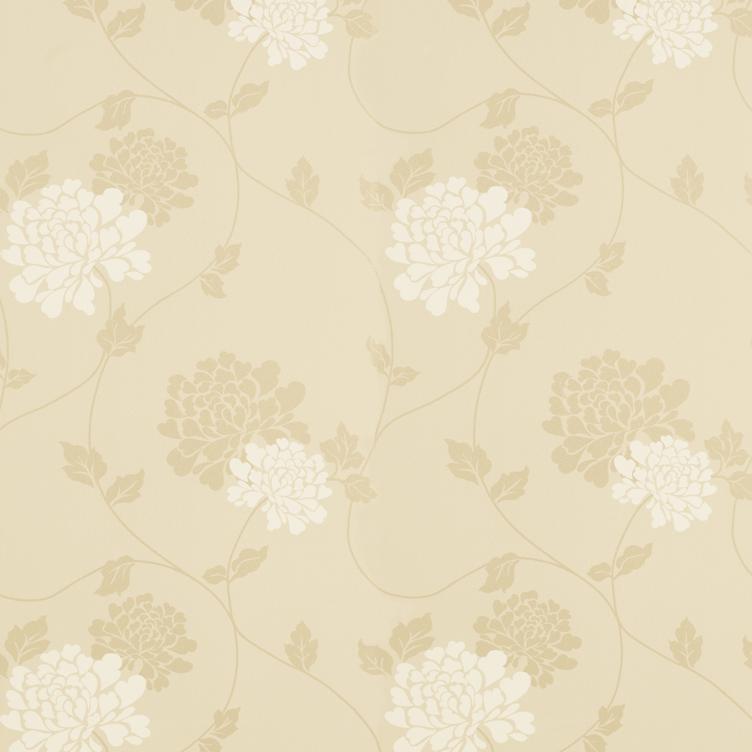 Champagne Color Wallpaper