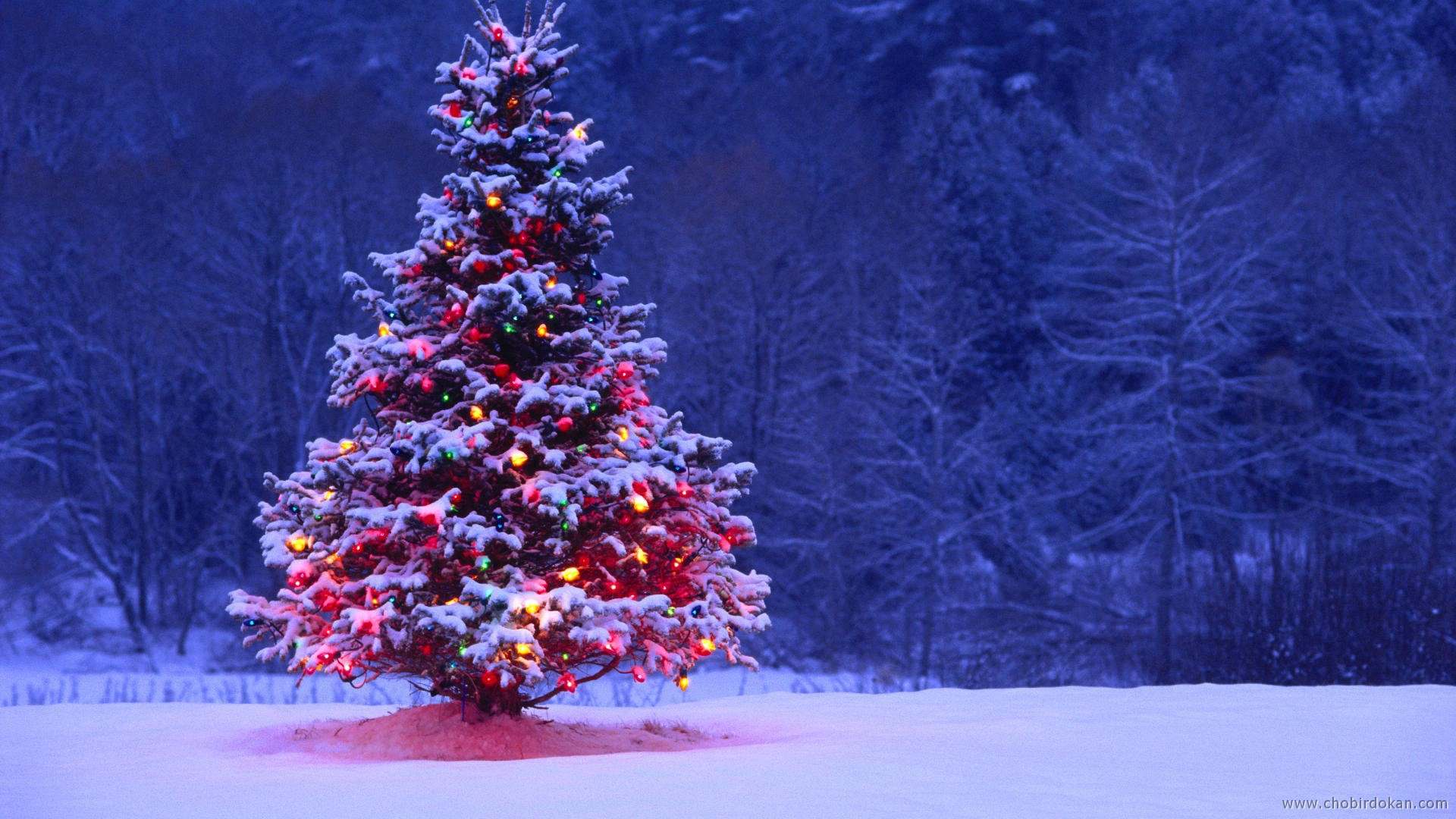 Christmas HD Wallpaper Free Download