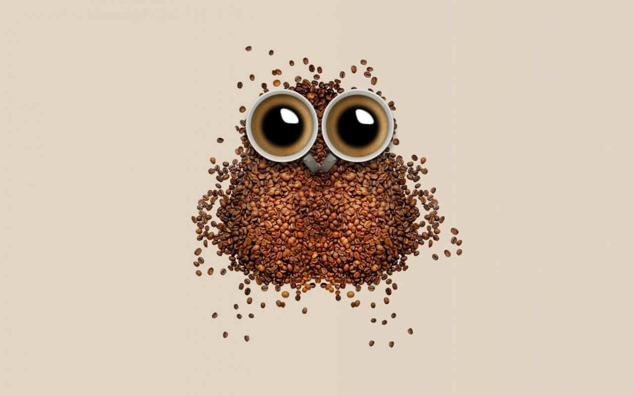 Coffee Owl Wallpaper