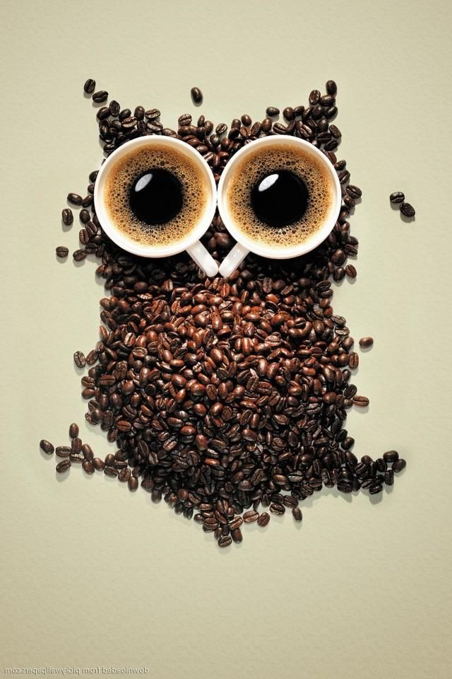 Download Coffee Owl Wallpaper Gallery