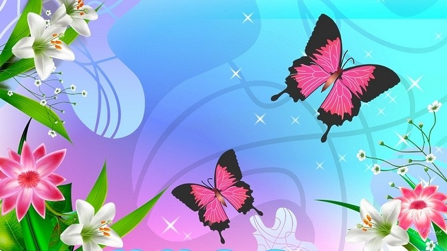 Colorful Butterflies Wallpaper