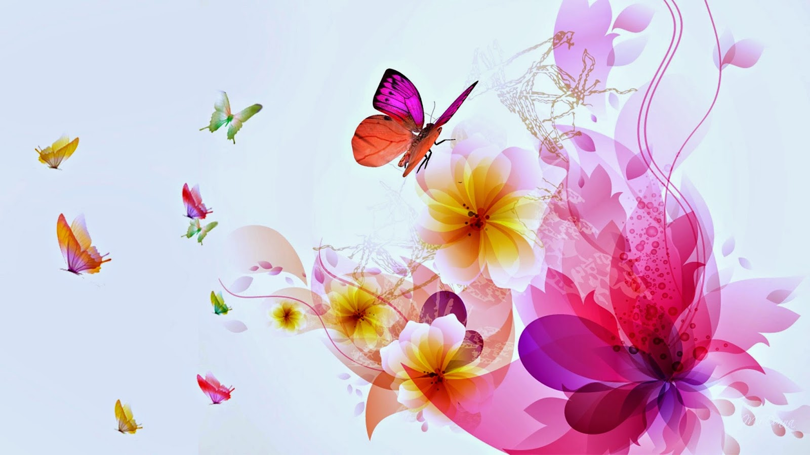 Colorful Butterfly Wallpaper