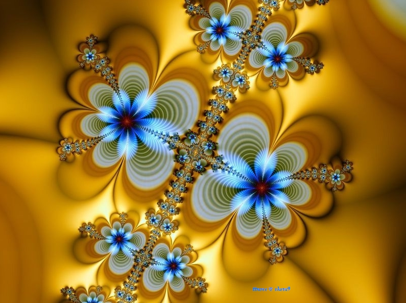 Free Colorful Flower Wallpaper Downloads: Download Colorful Flower Wallpaper Designs Gallery