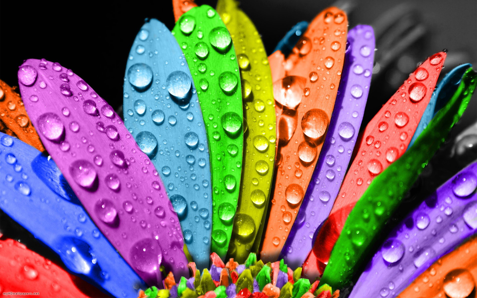 Colorful HD Wallpapers 1080p