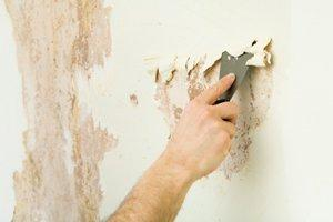 Cost To Remove Wallpaper And Paint