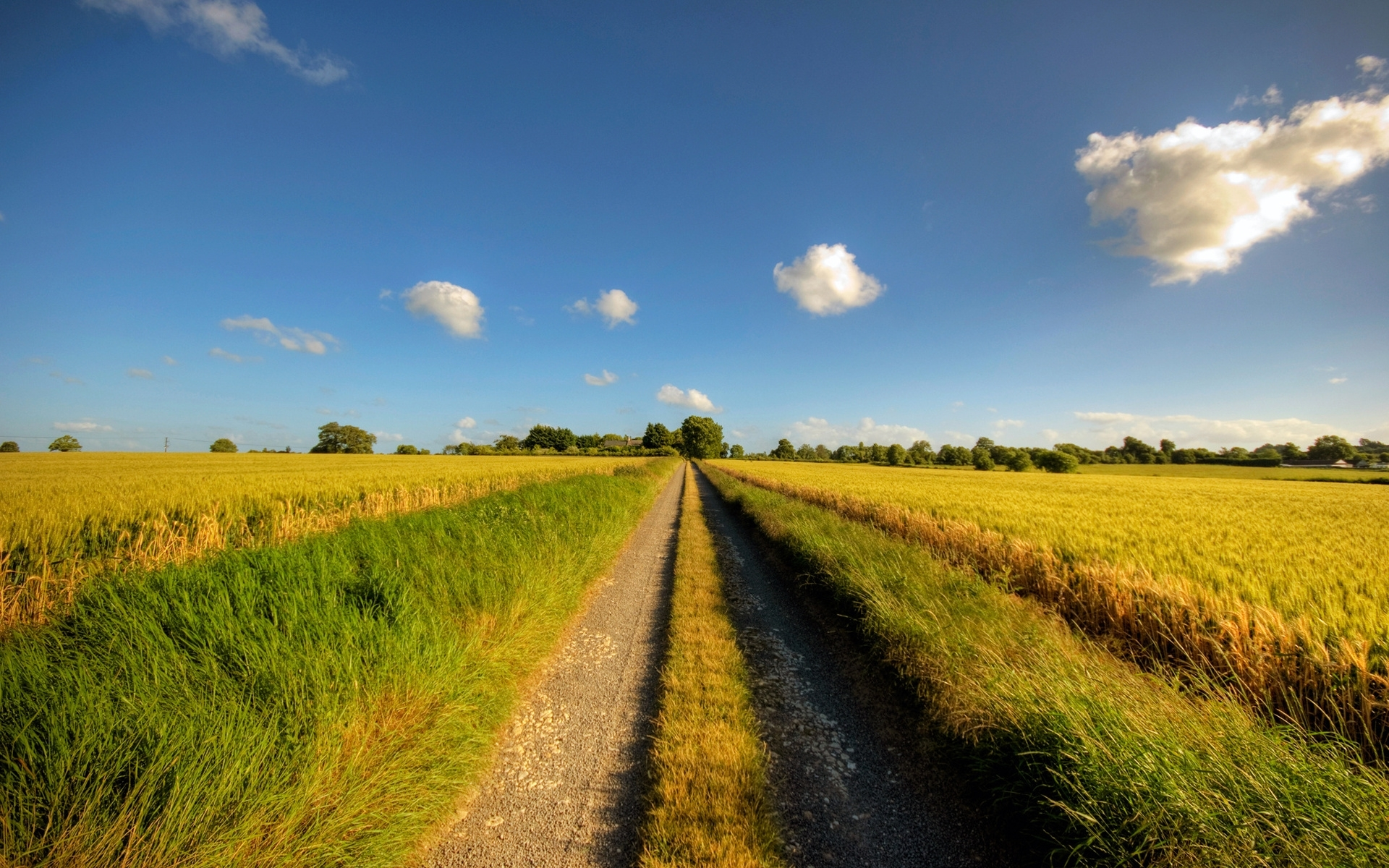Download Country Summer Wallpaper Gallery