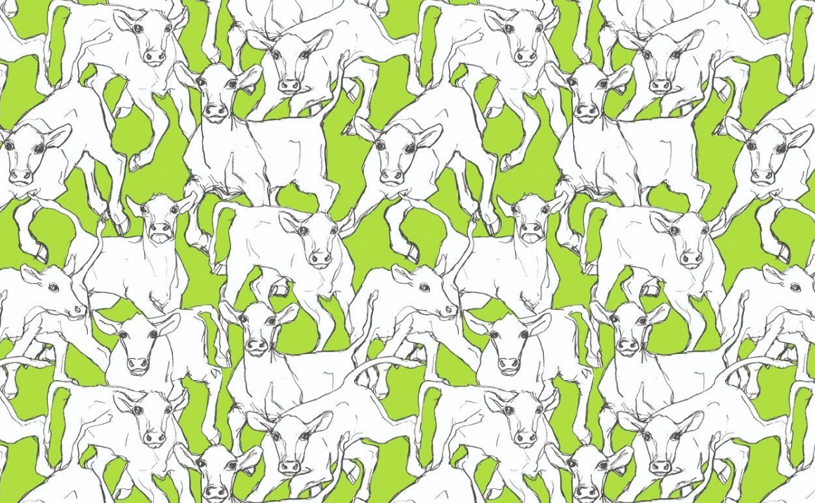 ... Images Of Cow Wallpaper For Kitchen   #SC ...