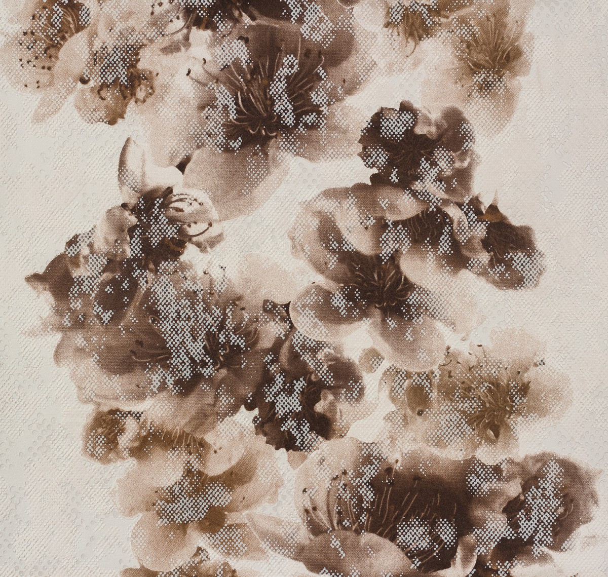 Cream Wallpaper Brown With Download Flowers Gallery