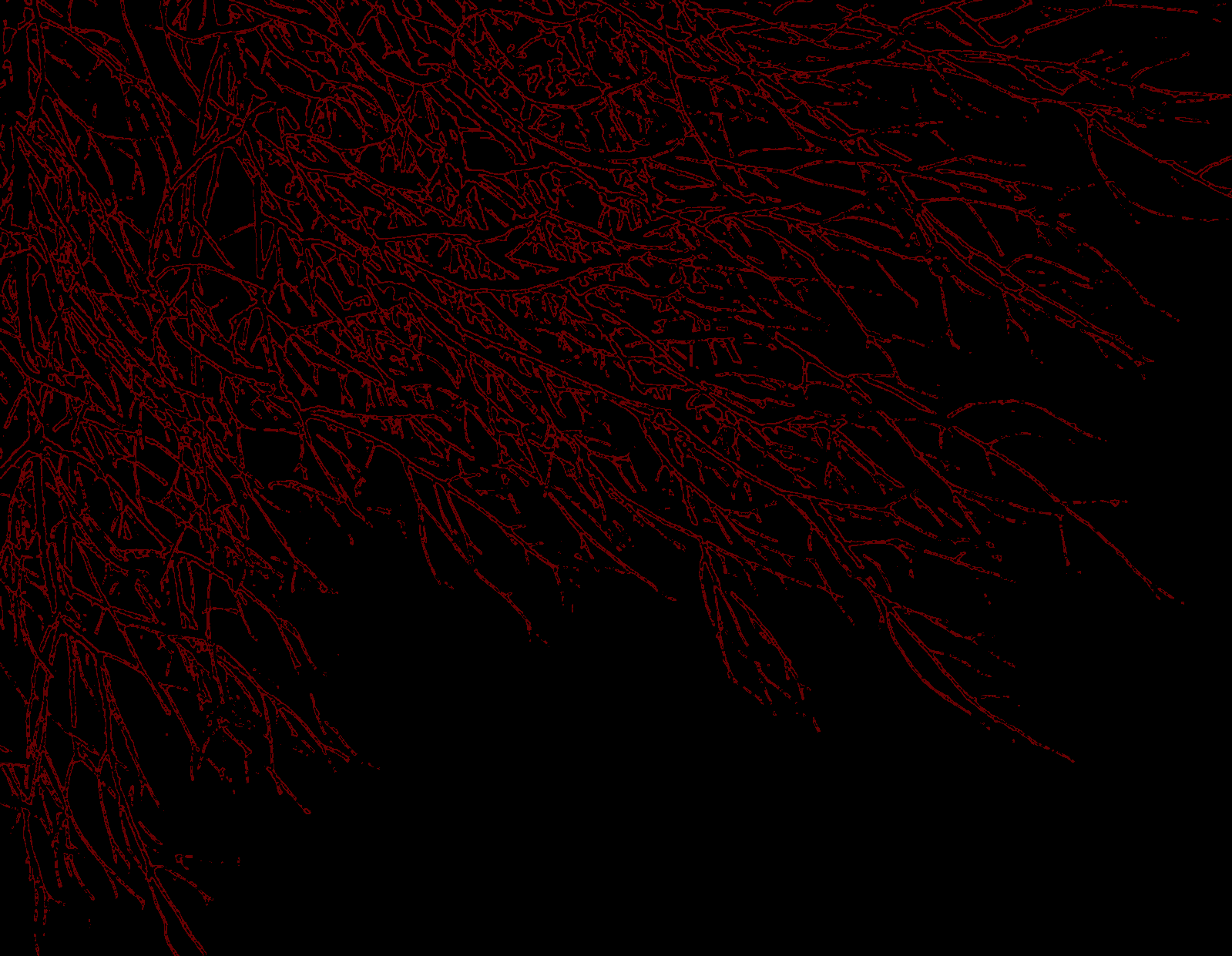 Crimson Red Wallpaper
