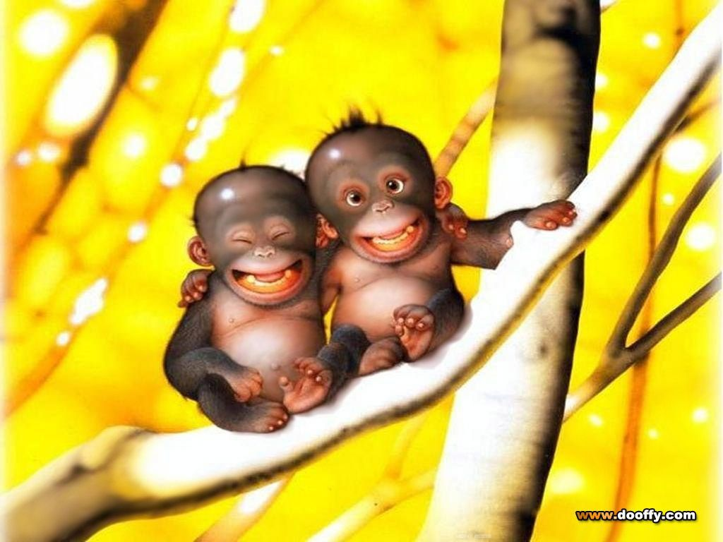 Cute Monkey Pictures Wallpapers