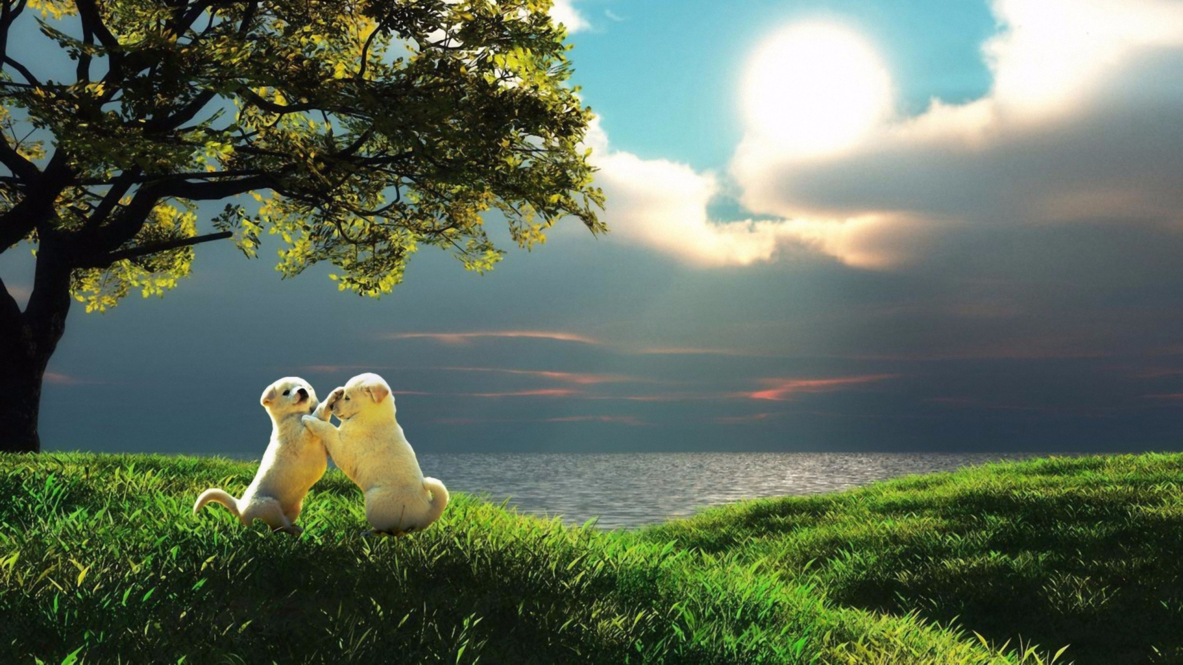 Cute Nature Wallpapers