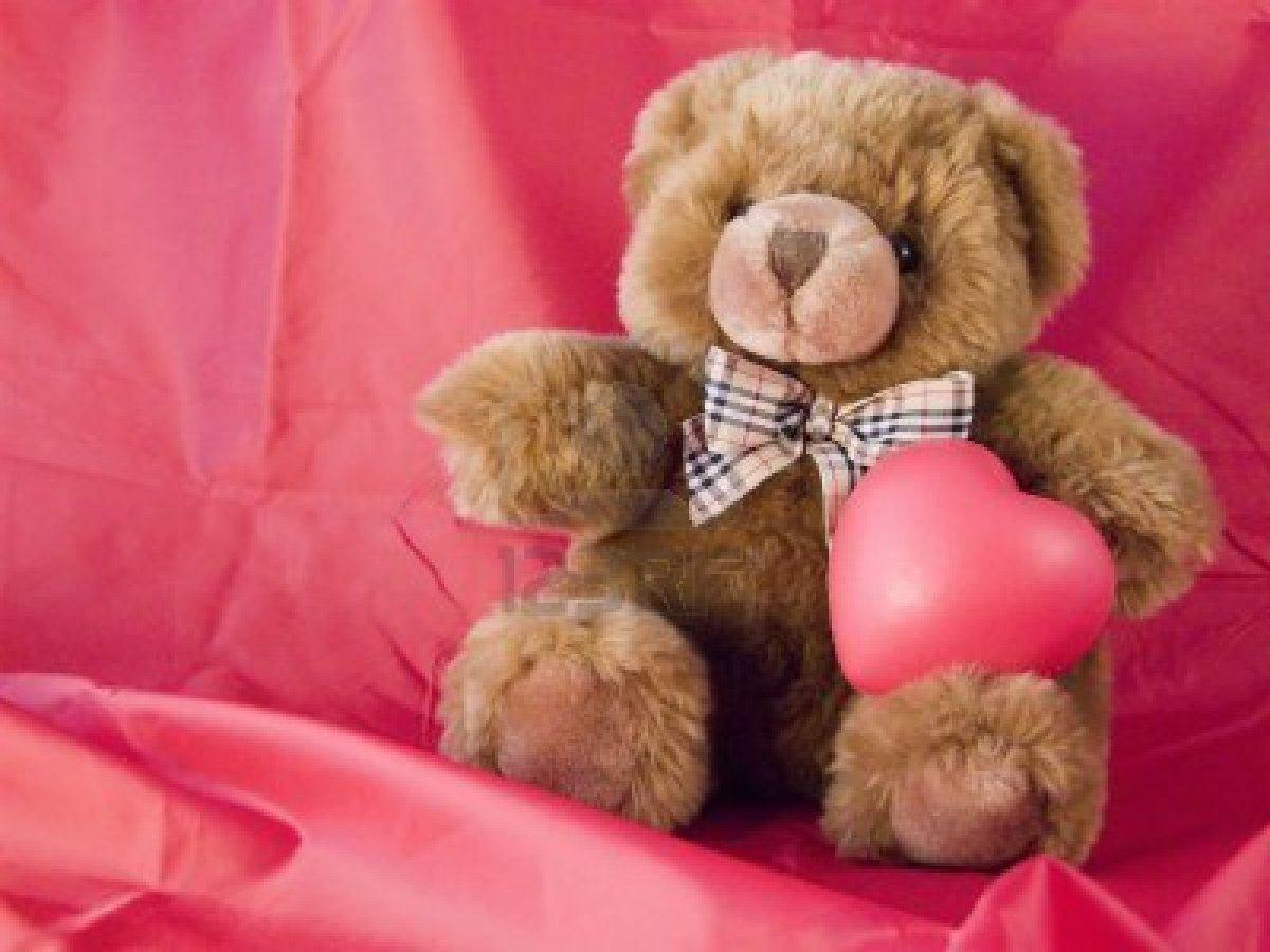Cute Teddy Pictures Wallpapers