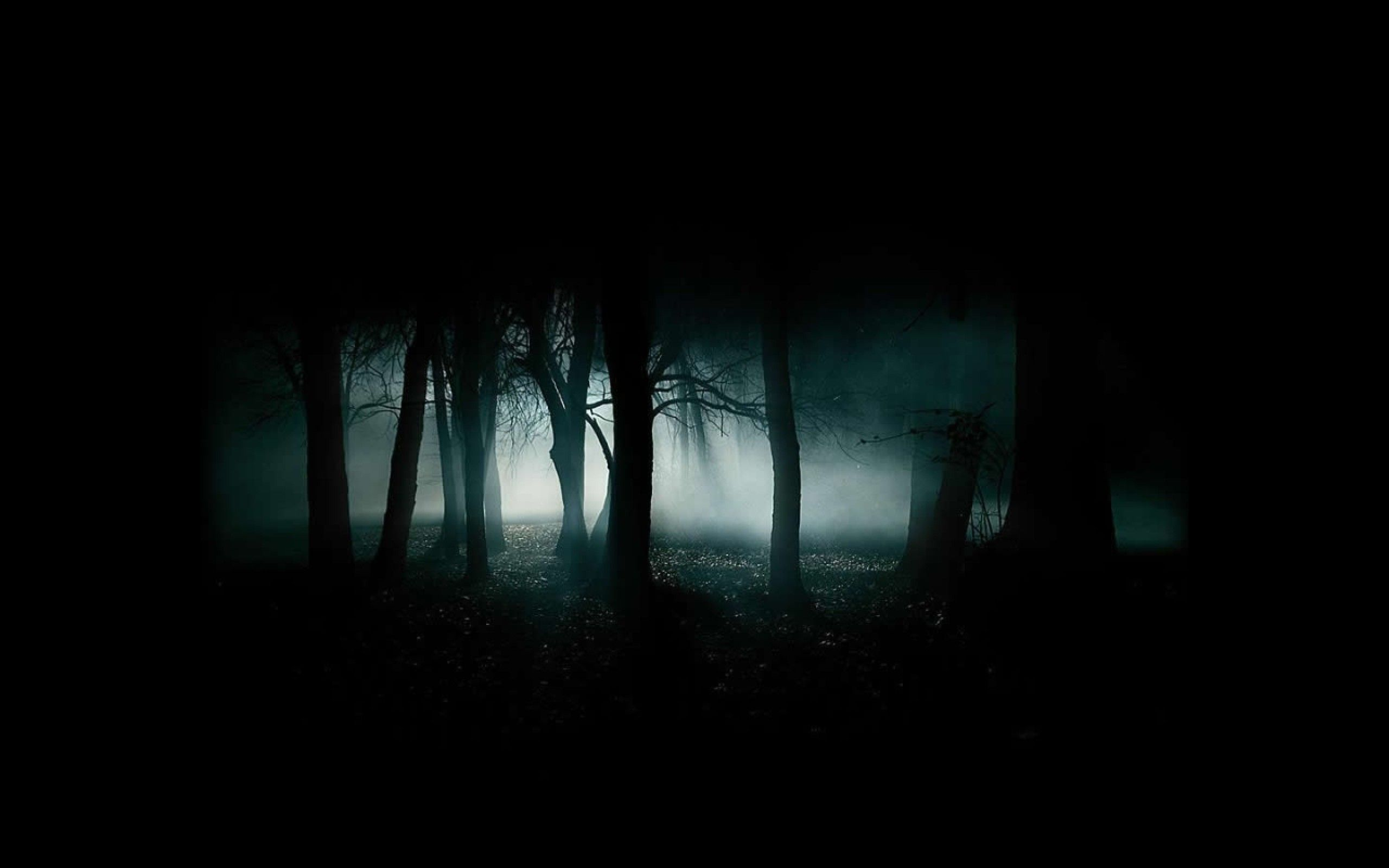 Dark Nature Wallpaper