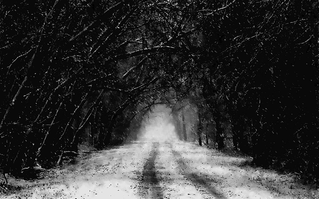 Download Dark Winter Wallpaper Gallery