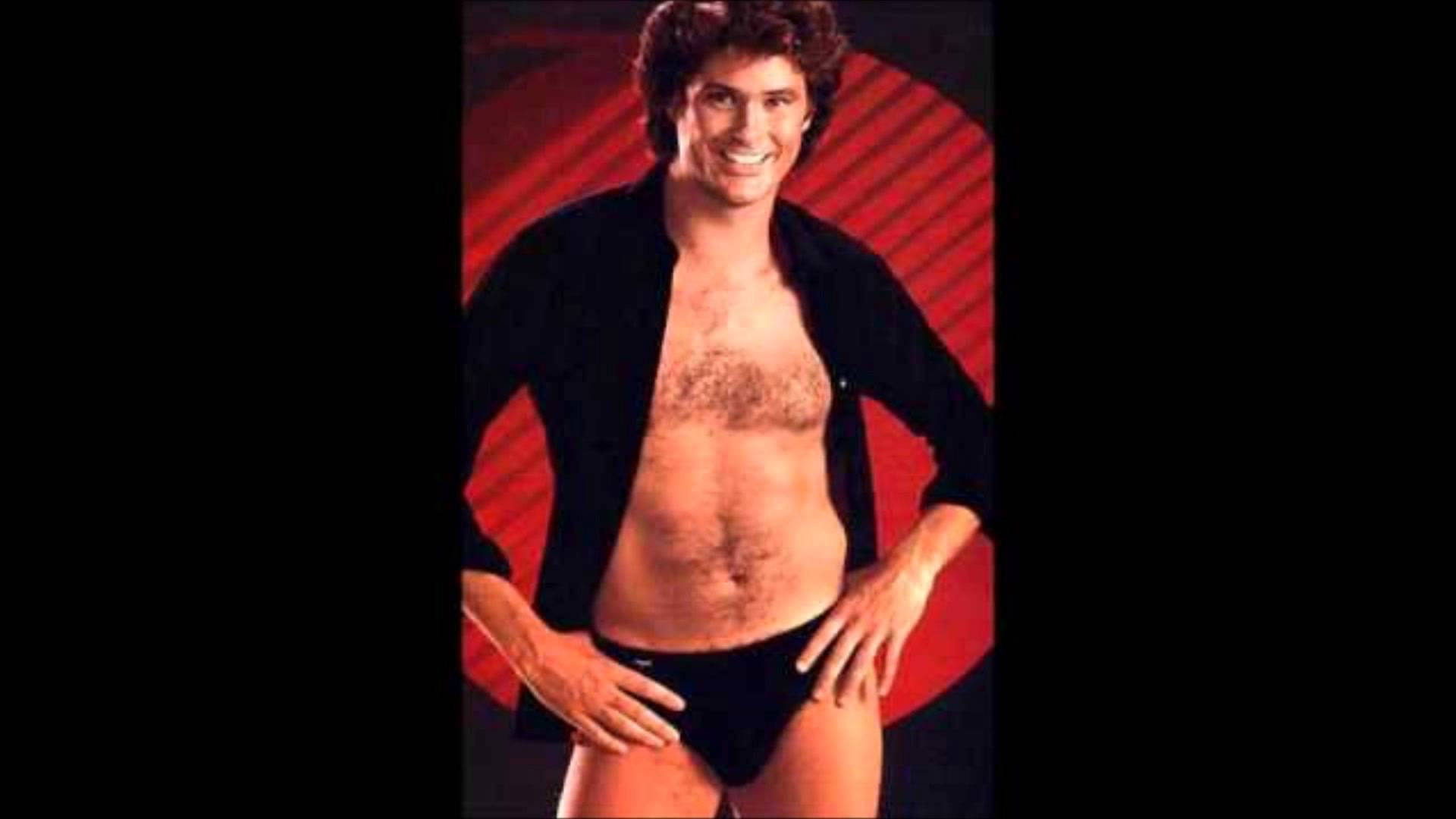 Download David Hasselhoff Wallpaper Gallery
