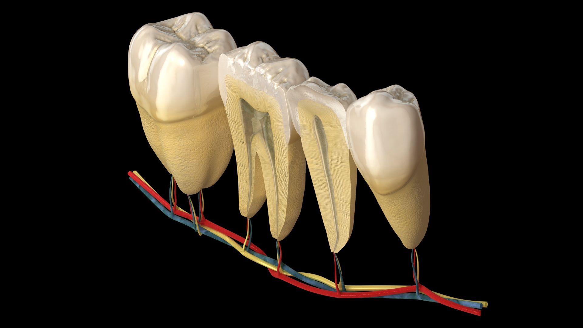 Download Dental Pics Wallpapers Gallery