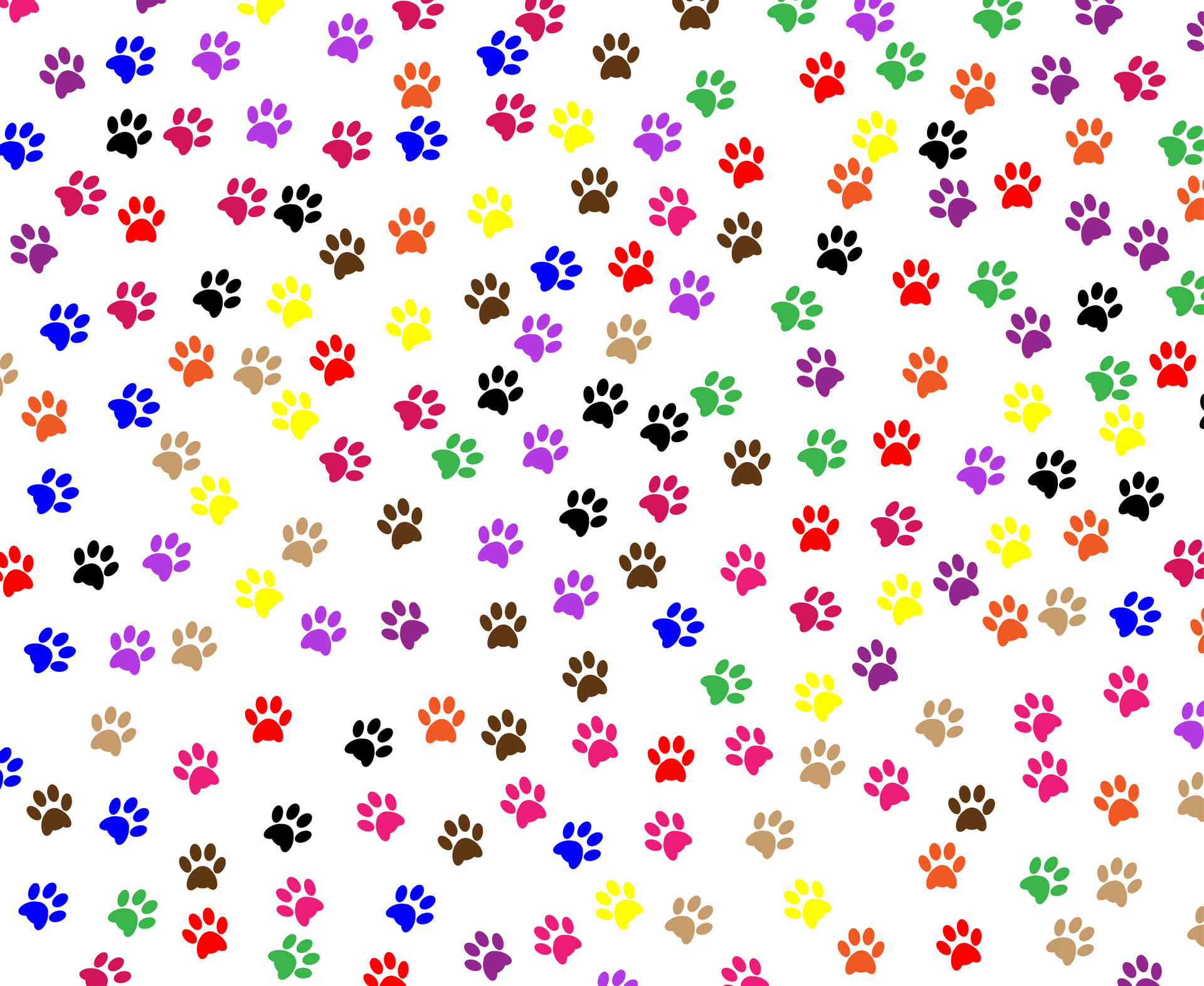 Dog Footprint Wallpaper