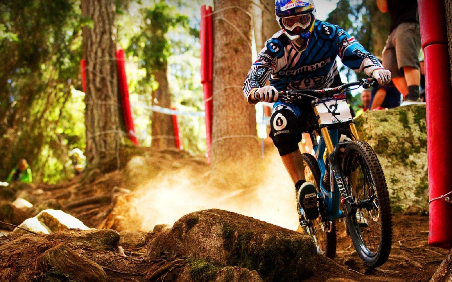 Downhill Bikes Wallpaper