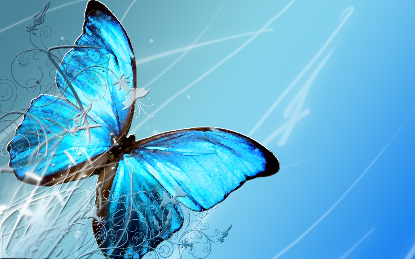 Download Wallpaper Of Butterfly