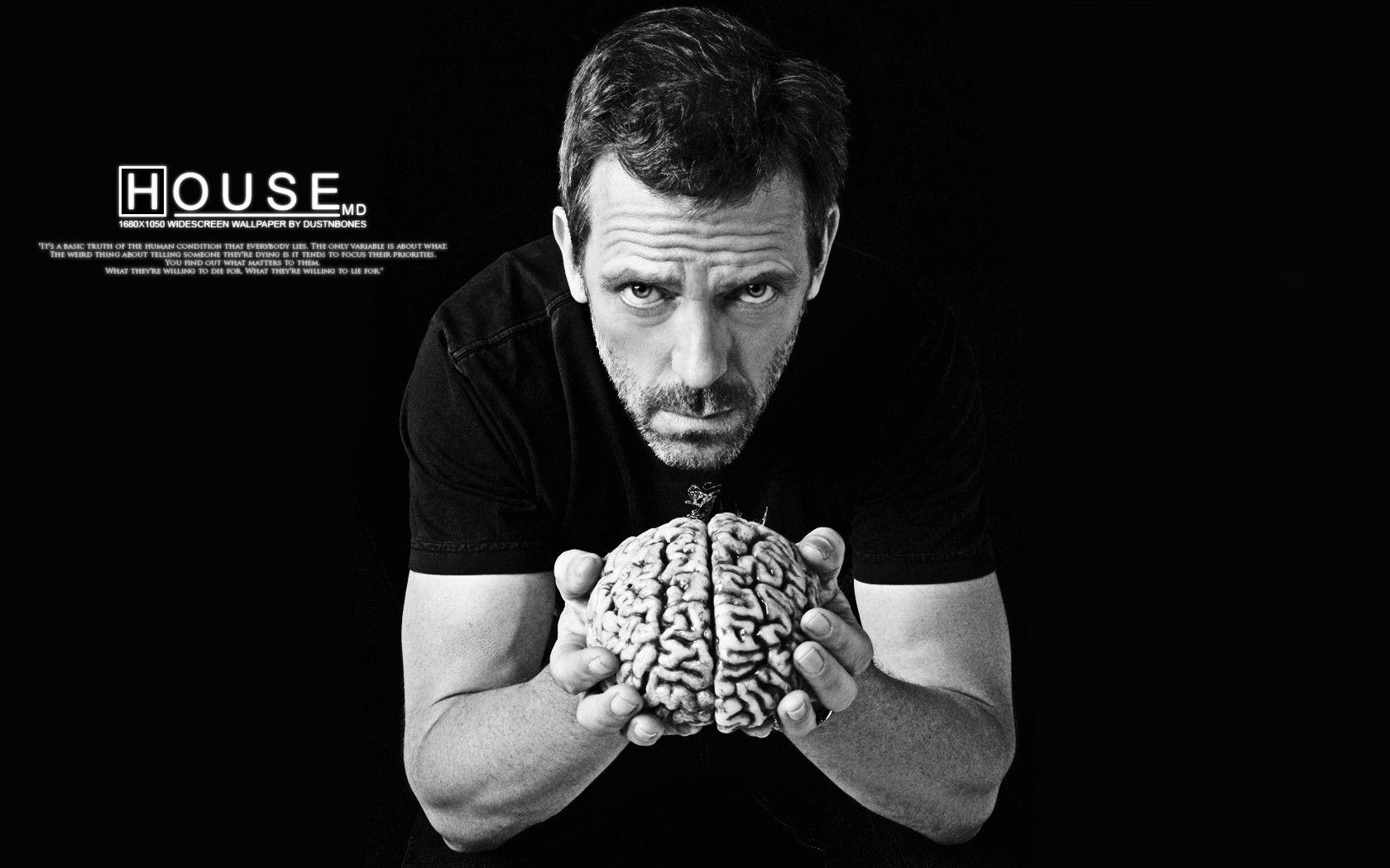 download dr house wallpapers gallery