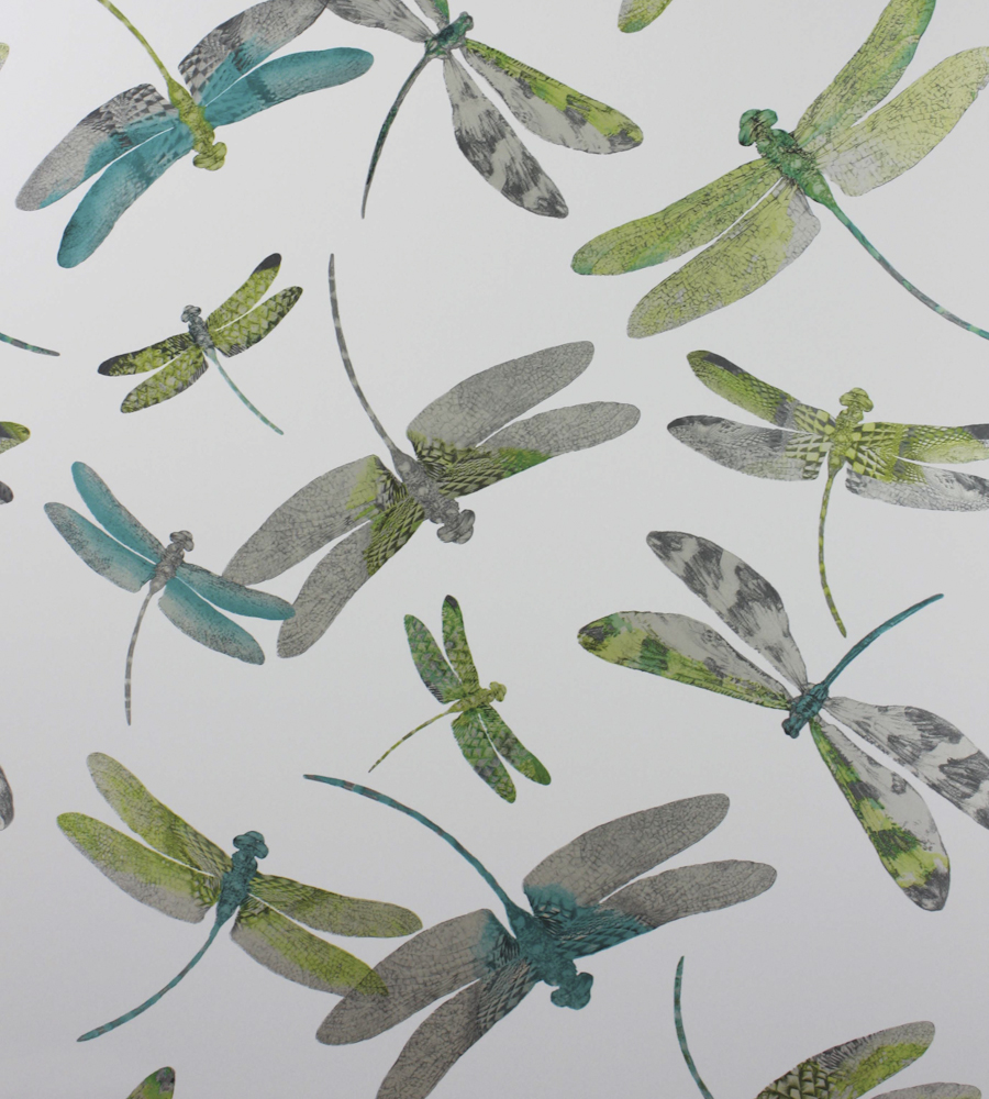 Dragonfly Wallpaper For Walls