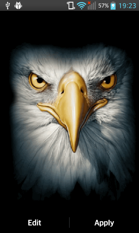 Eagle Live Wallpaper