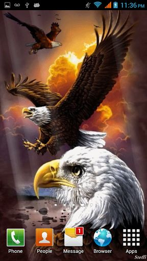 Download Eagle Live Wallpaper Gallery