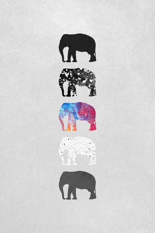Elephant Phone Wallpaper