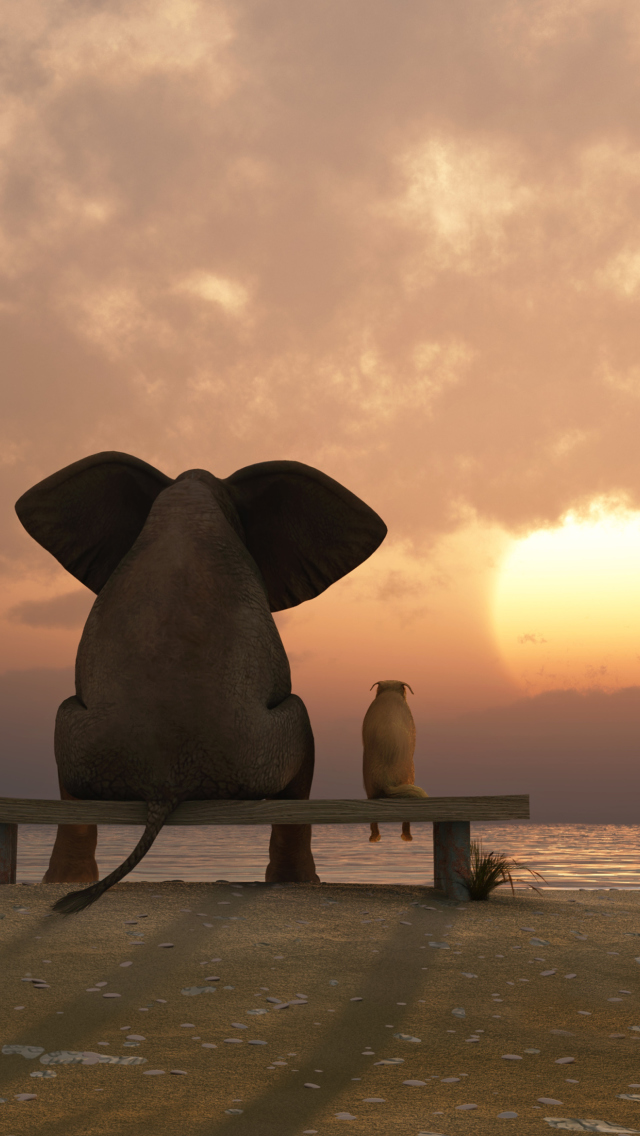 elephant iphone background elephant wallpaper iphone gallery 7023