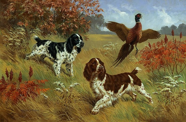 Animals And Pets Paintings
