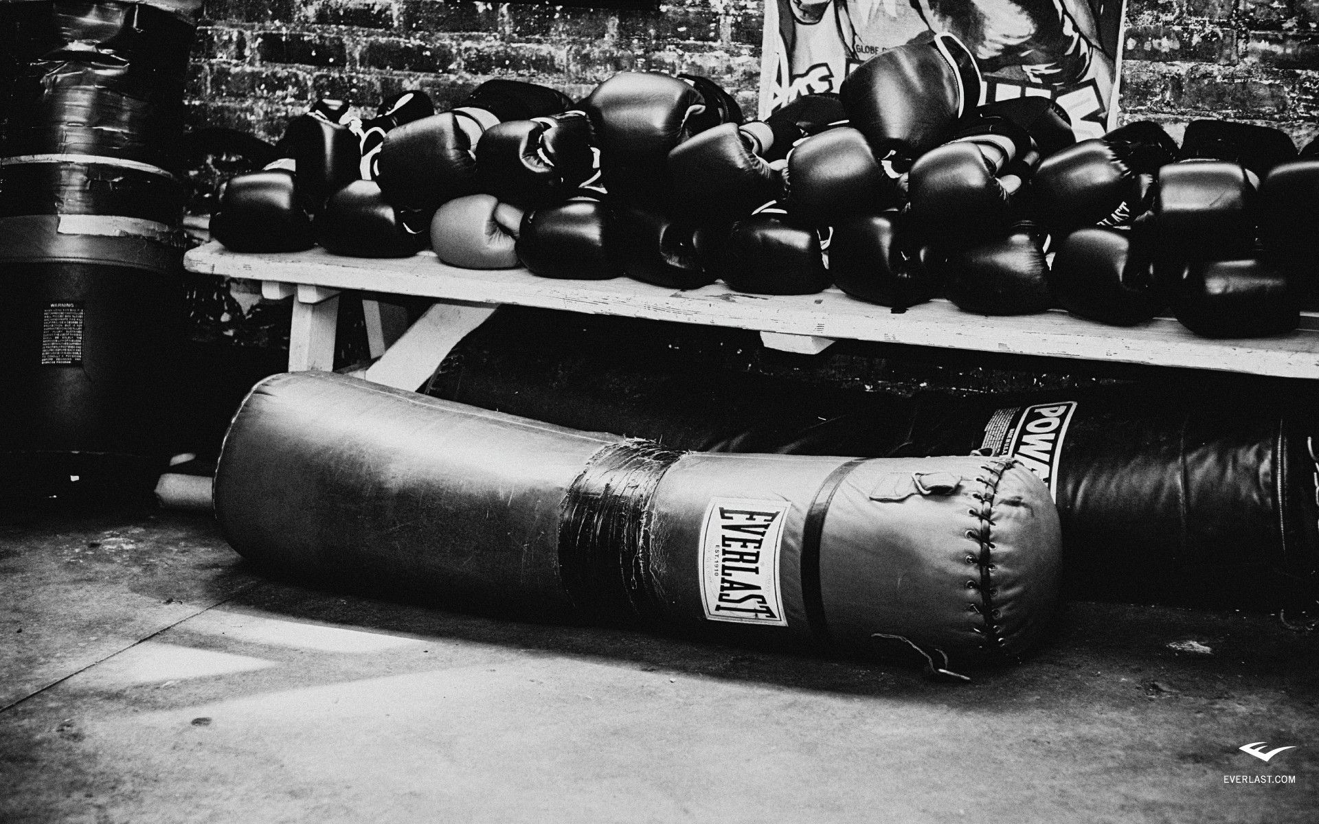 Everlast Boxing Wallpaper