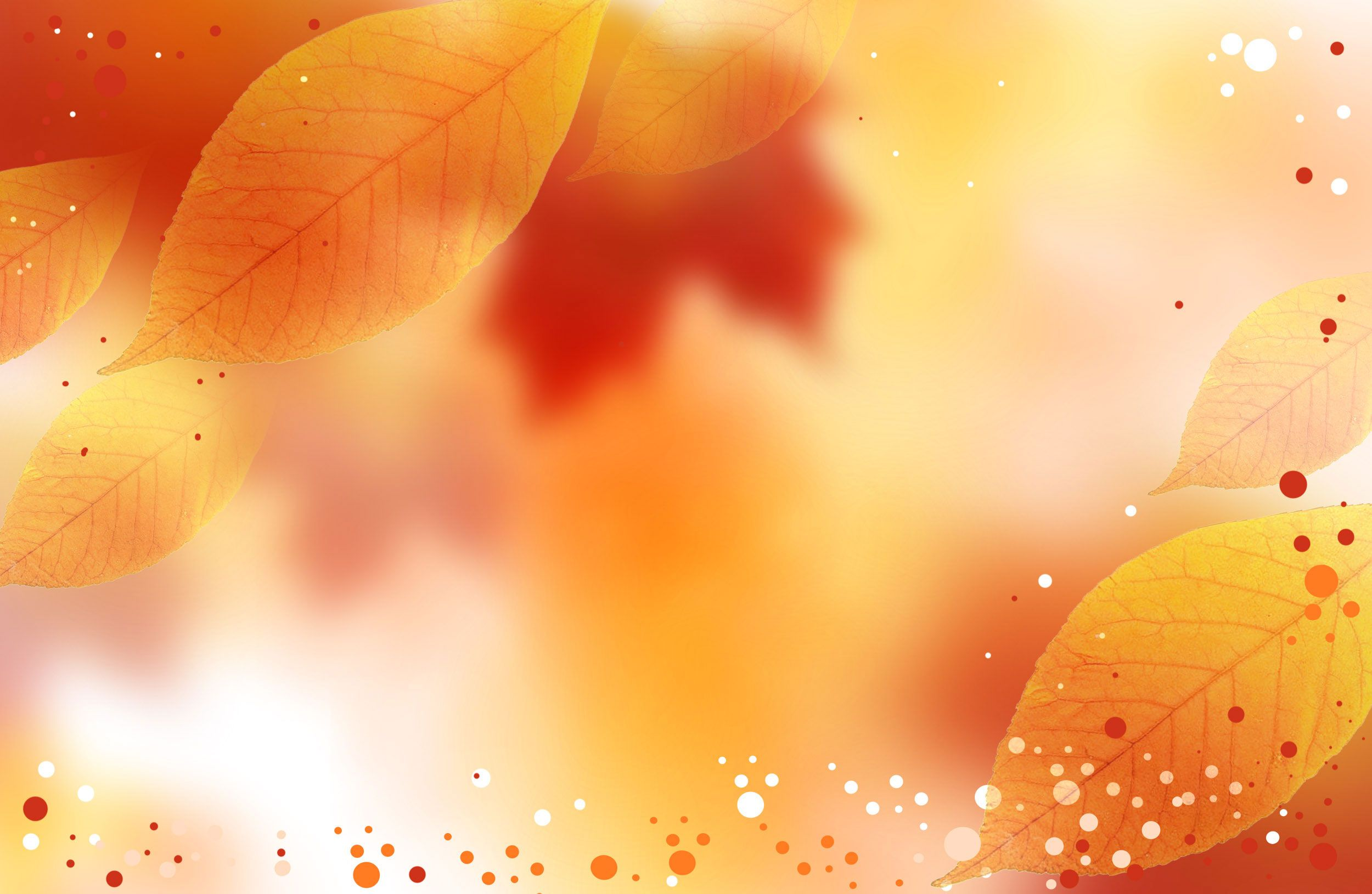 Fall Background Wallpaper