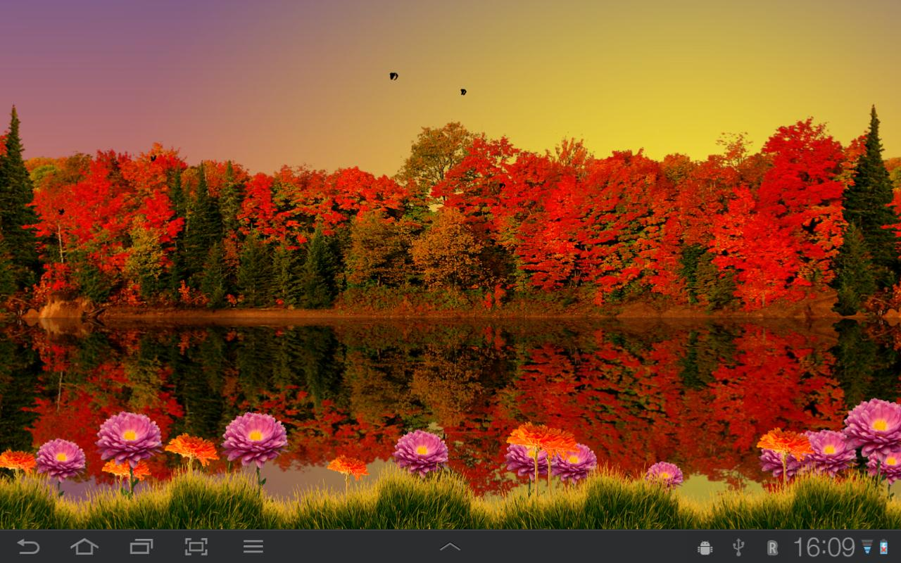 download fall live wallpapers android gallery