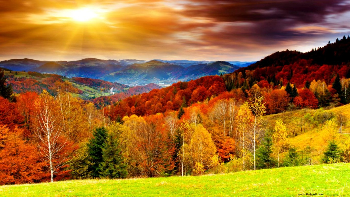 fall season Get the asheville, north carolina, fall leaf forecast for autumn foliage, event calendar, reports and photos of blue ridge parkway and mountain views.