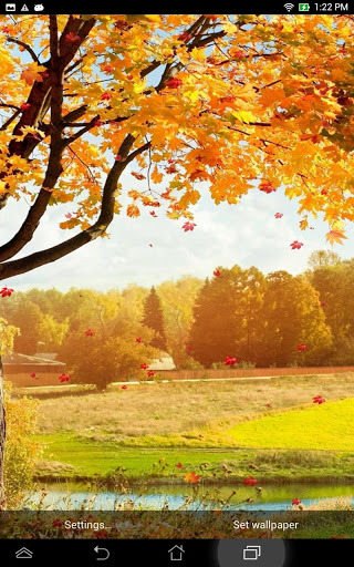 Falling Leaves Live Wallpaper Download