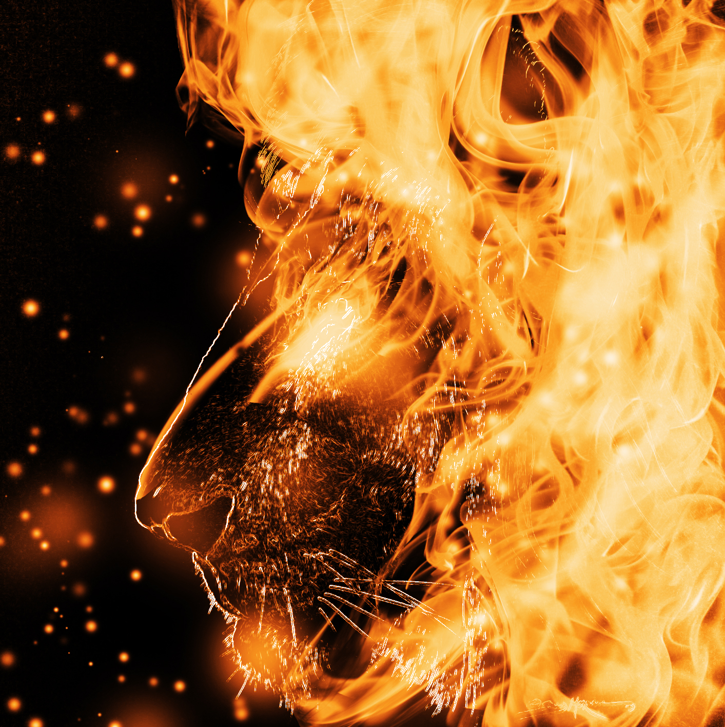 Download Fire Lion Wallpaper Gallery