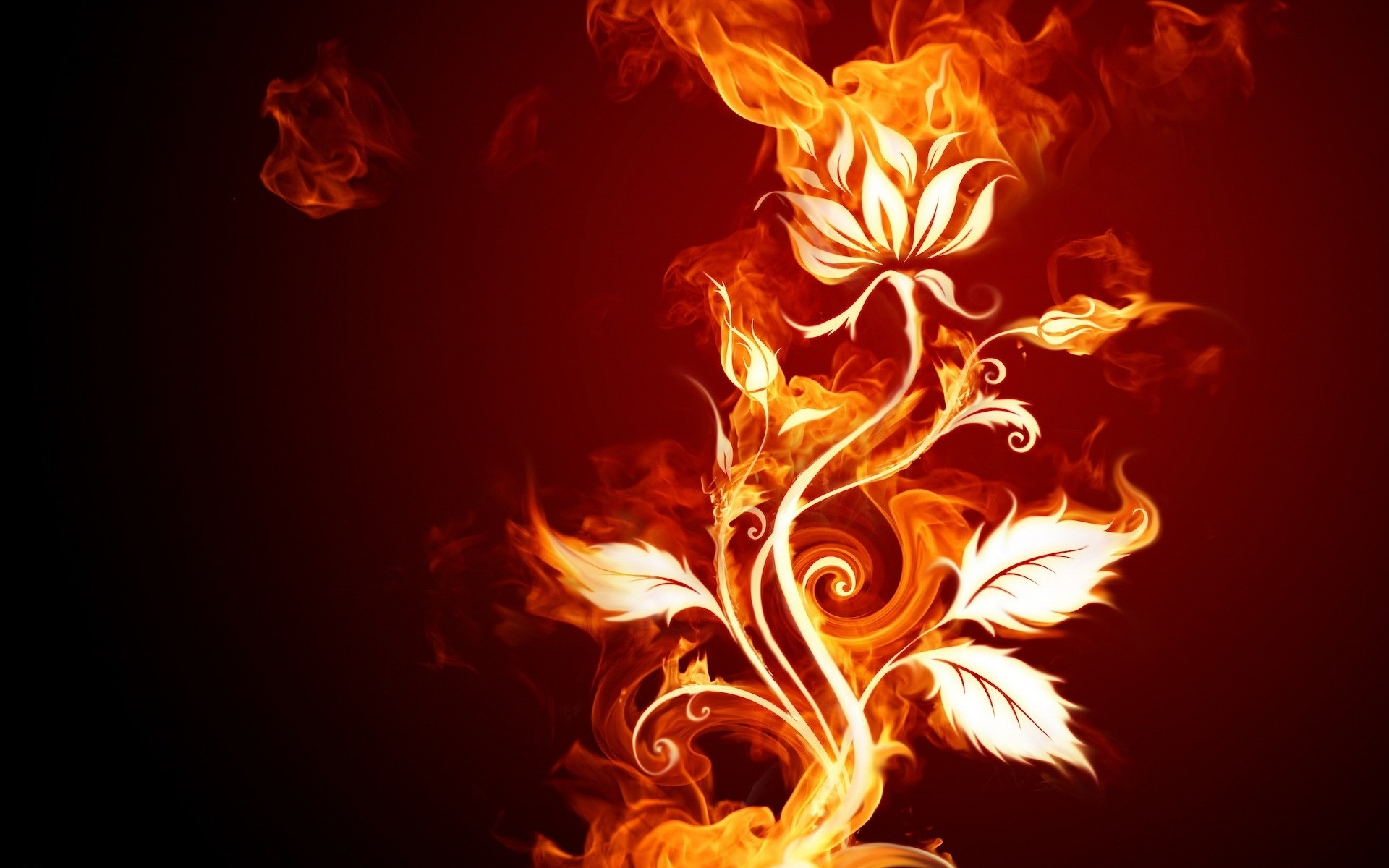Fire Rose Wallpaper