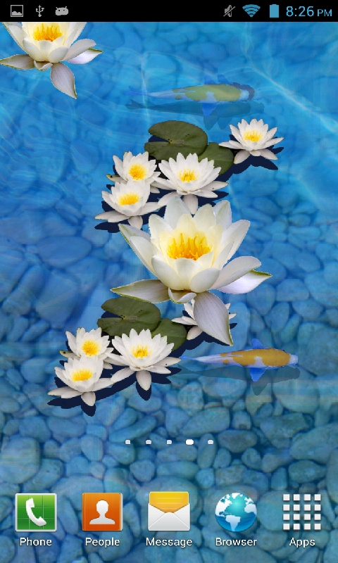 Fish Pond Wallpapers Free