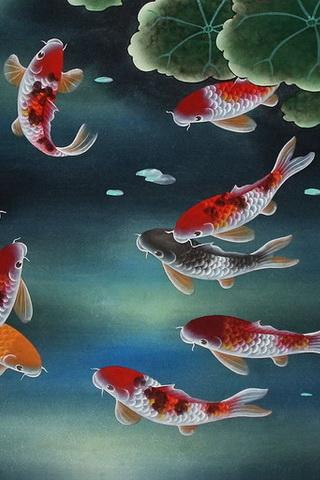 Fish Touch Live Wallpaper