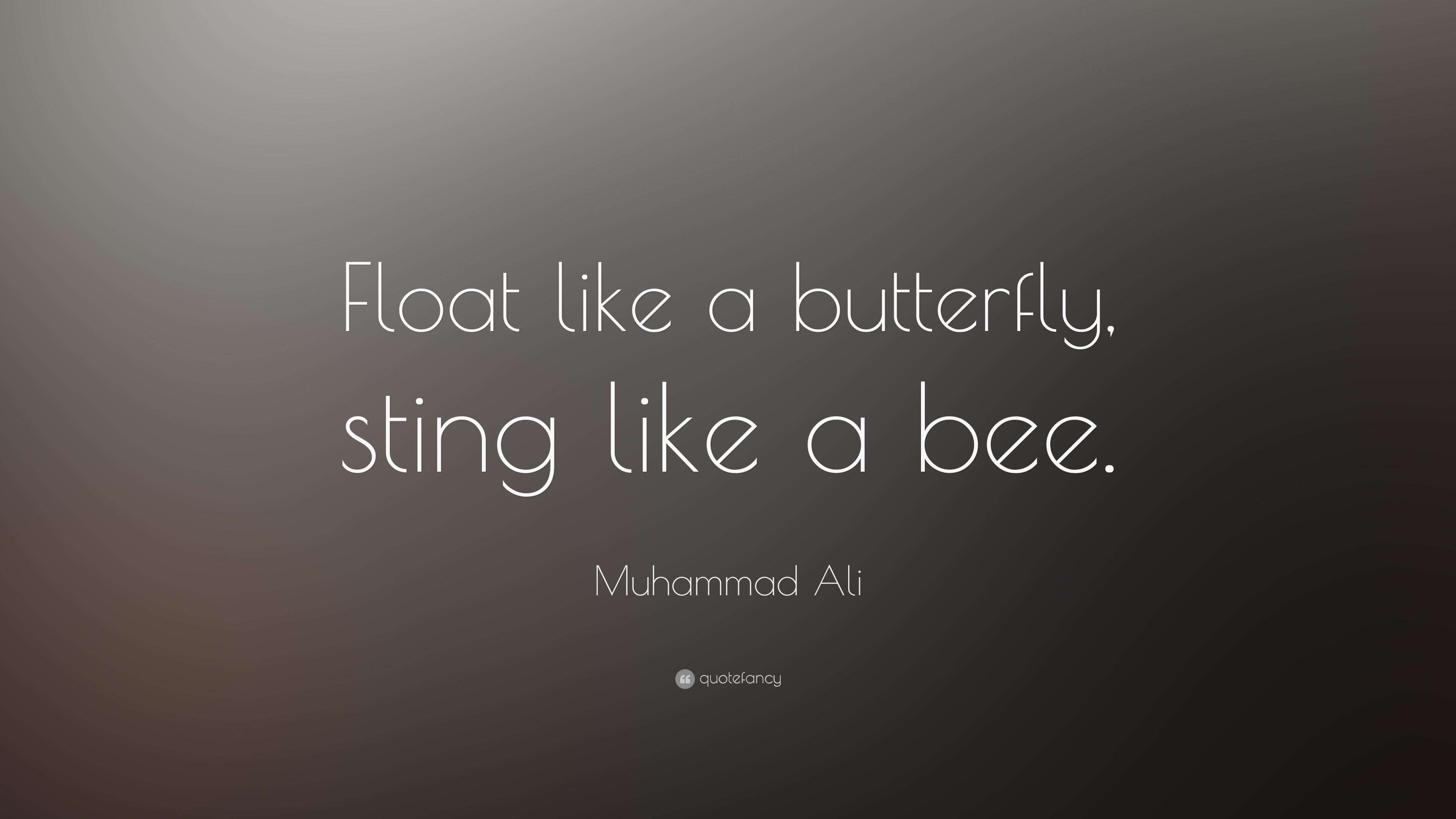 Float Like A Butterfly Sting Like A Bee Wallpaper