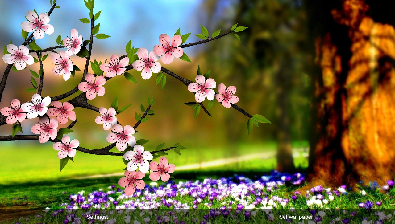 Flower 3D Live Wallpaper
