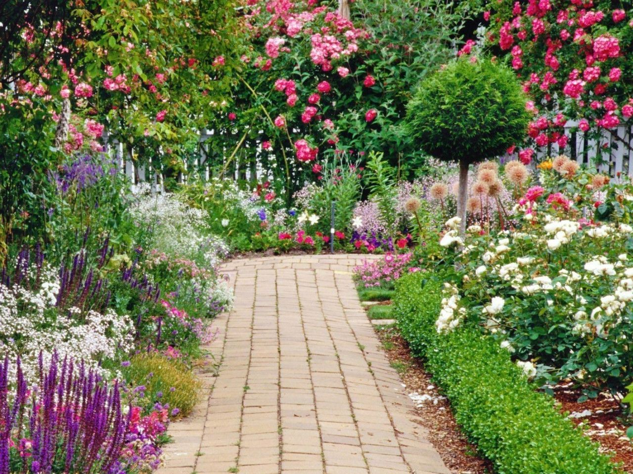 Flower Garden Wallpaper Background