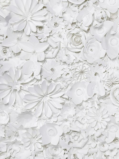 Flower Paper Wallpaper