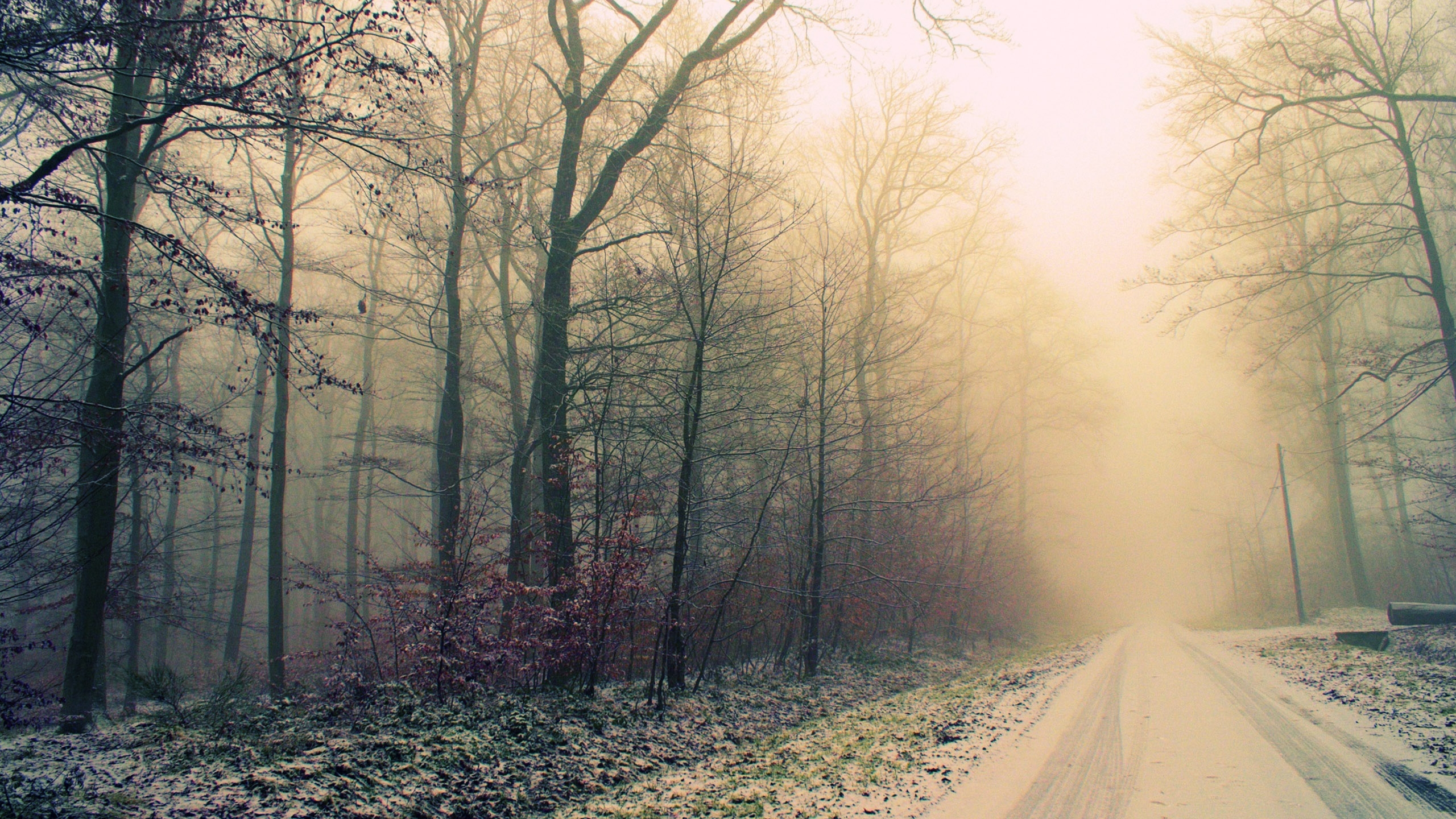 Foggy Weather Wallpapers