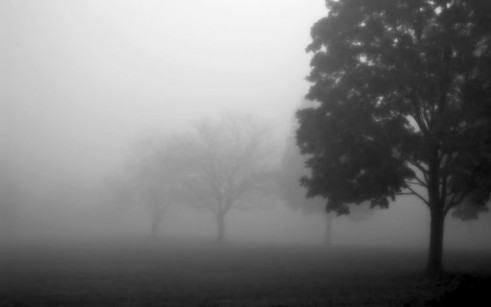 Download Foggy Weather Wallpapers Gallery