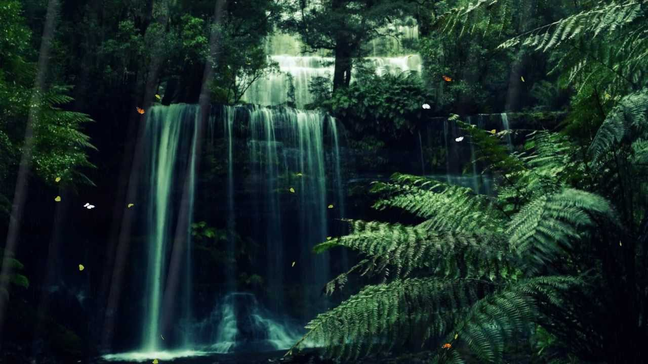 Forest Animated Wallpaper