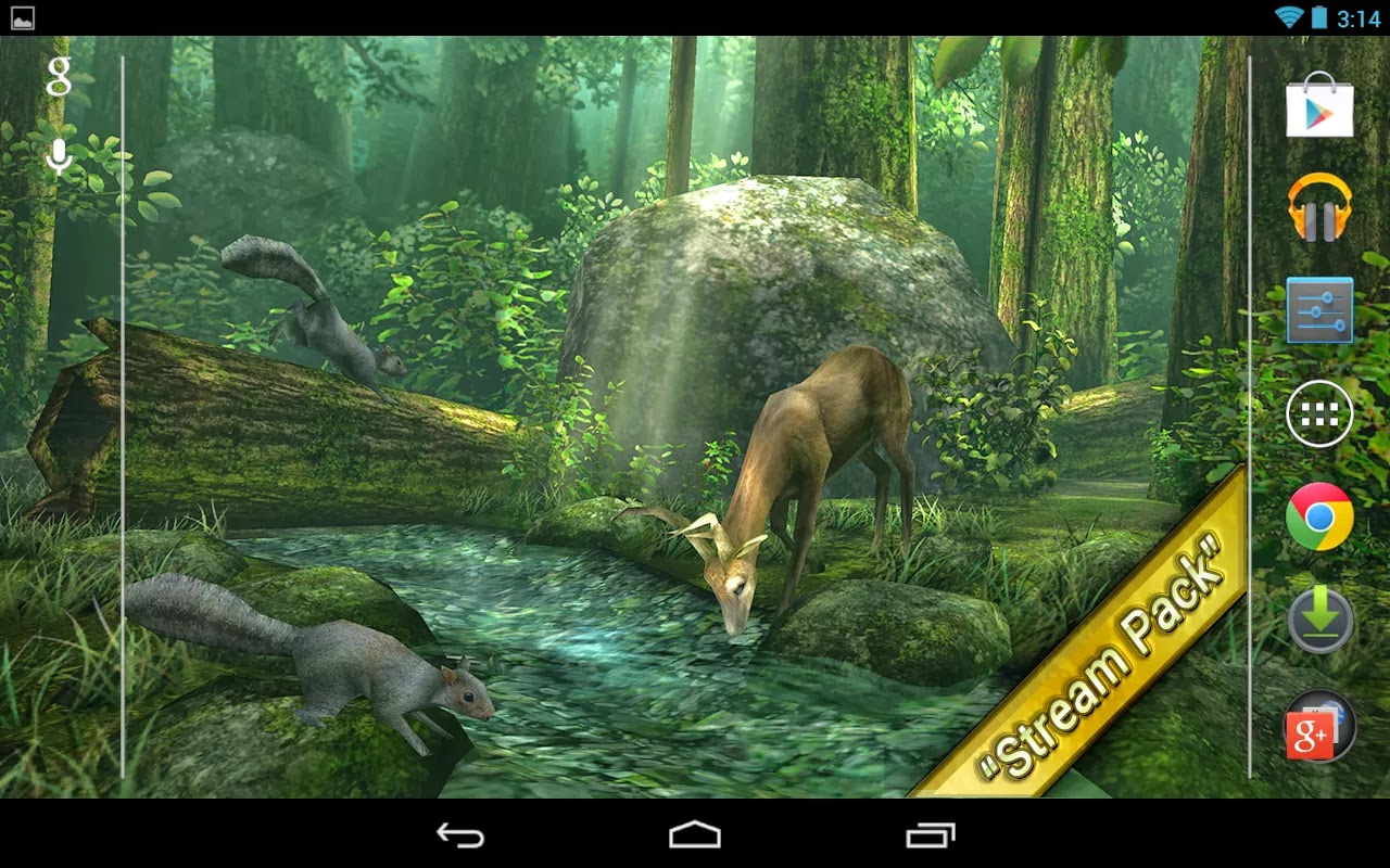 Forest HD Live Wallpaper Free Download